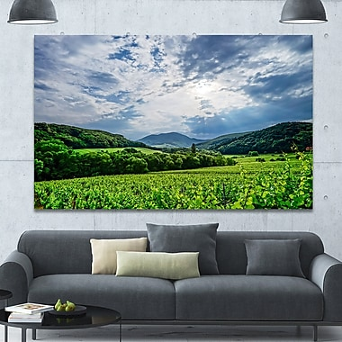 DesignArt 'Thunderstorm Weather over Vineyards' Photographic Print on Wrapped Canvas