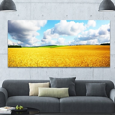 DesignArt 'Beautiful Field Panorama' Photographic Print on Wrapped Canvas; 28'' H x 60'' W x 1.5'' D