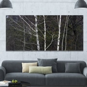 DesignArt 'Black and White Birch Forest' Photographic Print on Wrapped Canvas