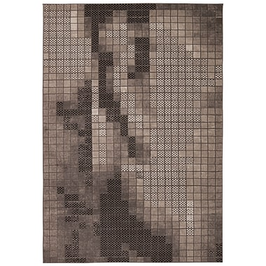 Latitude Run Ester Gray Rug; 9'3'' x 12'9''