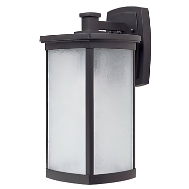 Latitude Run Ina 1-Light Outdoor Wall Lantern; Bronze
