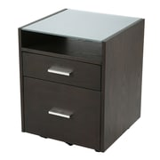 Latitude Run Larkson 2 Drawer Filing Cabinet