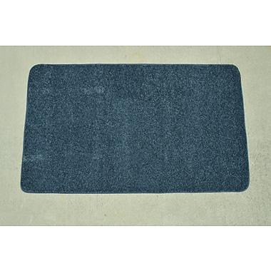 Latitude Run Makenna Colonial Blue Area Rug; 3' x 5'
