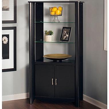 Latitude Run Wentworth 2 Door Accent Cabinet; Classic Black