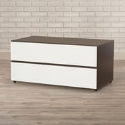 Latitude Run Gena 2 Drawer TV Stand