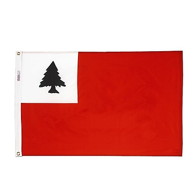 Annin Flagmakers Nylon Continental Traditional Flag; 24'' H x 36'' W
