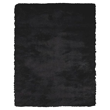 Willa Arlo Interiors Agathon Black Rug; 3'6'' x 5'6''