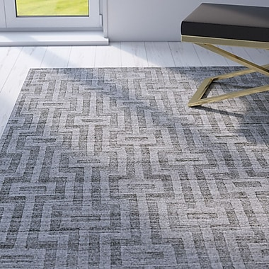 Willa Arlo Interiors Damiane Hand-Loomed Gray Graphite Area Rug; 4' x 6'
