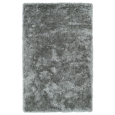 Willa Arlo Interiors Selman Silver Area Rug; 2' x 3'