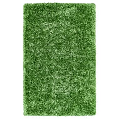 Willa Arlo Interiors Caine Lime Green Area Rug; 2' x 3'