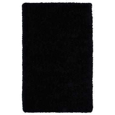 Willa Arlo Interiors Selman Black Area Rug; 5' x 7'