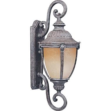 One Allium Way Castres 1-Light Outdoor Wall Lantern; 27'' H x 10.5'' W x 10.5'' D