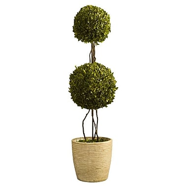 One Allium Way Preserved Boxwoods Double Sphere Topiary in Pot; 28'' H x 6'' W x 6'' D