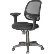 Symple Stuff Mid-Back Mesh Desk Chair; Black