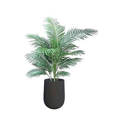 Dalmarko Designs Lush Palm Tree in Planter; Dark