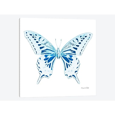 East Urban Home 'Miss Butterfly X-Ray XXX' Graphic Art Print on Canvas; 12'' H x 12'' W x 0.75'' D
