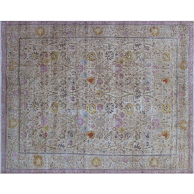 Darby Home Co Cathryn Vintage Distressed Hand-Knotted Beige Area Rug