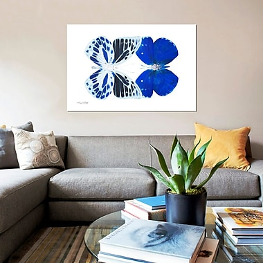 East Urban Home 'Miss Butterfly X-Ray XIV' Graphic Art Print on Canvas; 40'' H x 60'' W x 1.5'' D