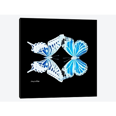 East Urban Home 'Miss Butterfly X-Ray XVI' Graphic Art Print on Canvas; 26'' H x 26'' W x 0.75'' D