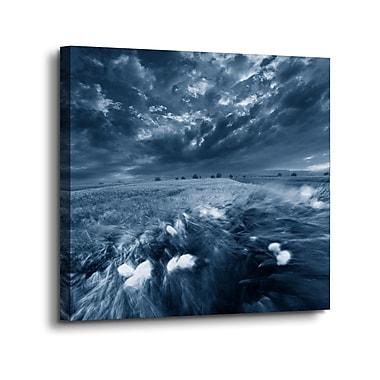 Ebern Designs 'Moonlight Field' Graphic Art Print on Canvas; 24'' H x 24'' W x 2'' D