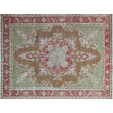 Astoria Grand Alber Overdyed Distressed Hand-Knotted Brown Area Rug