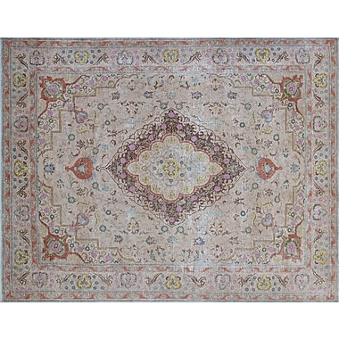 Astoria Grand Floriana Distressed Overdyed Hand-Knotted Beige Area Rug