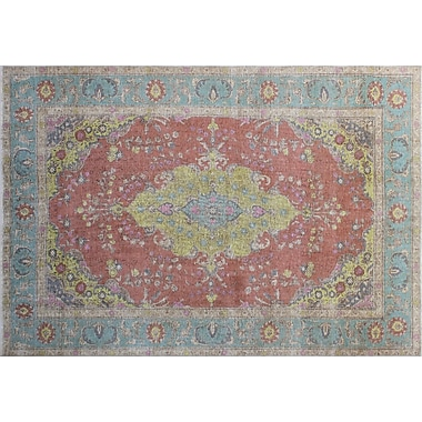 Astoria Grand Junya Overdyed Distressed Hand-Knotted Rust Area Rug