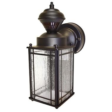 Alcott Hill Nordmeyer 1-Light Outdoor Wall Lantern; Oil Rubbed Bronze