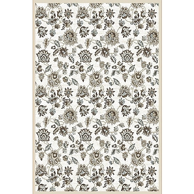 Charlton Home Ackermanville Bone Area Rug; Round 5'3''