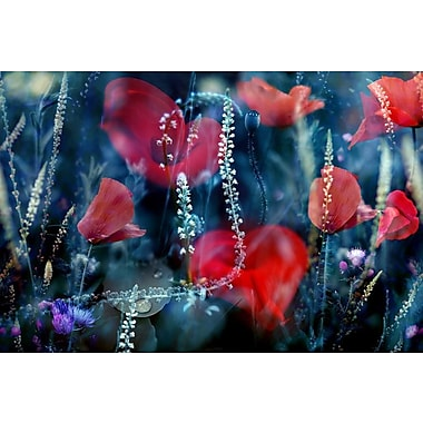 East Urban Home 'Red And Blue' Graphic Art Print on Canvas; 8'' H x 12'' W x 0.75'' D