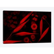 East Urban Home 'Red World II' Graphic Art Print on Canvas; 18'' H x 26'' W x 0.75'' D
