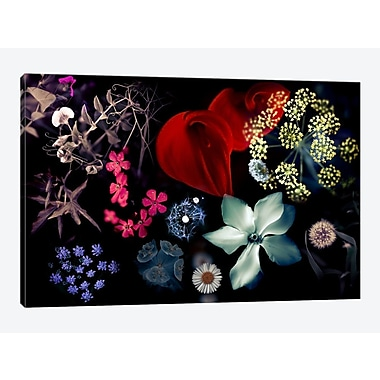 East Urban Home 'Seasons And Colors' Graphic Art Print on Canvas; 40'' H x 60'' W x 1.5'' D