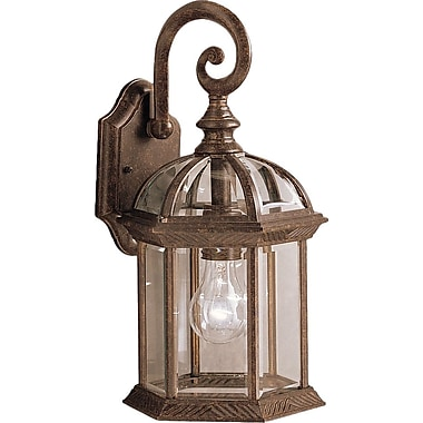 Astoria Grand Caroline 1-Light Outdoor Wall Lantern; Tannery Bronze