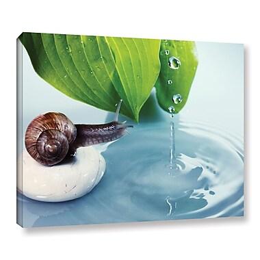 Ebern Designs 'Rain Snail 1' Photographic Print on Canvas; 8'' H x 10'' W x 2'' D