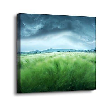 Ebern Designs 'Barley in Storm' Graphic Art Print on Canvas; 24'' H x 24'' W x 2'' D