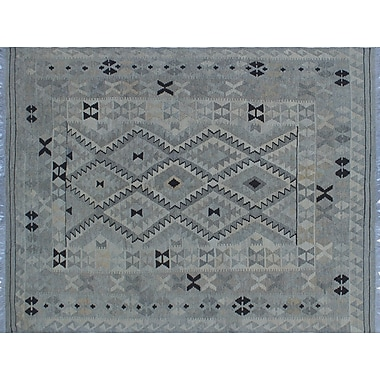 Loon Peak Vallejo Kilim Southwestern Hand-Woven Beige Wool Area Rug