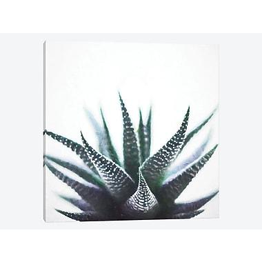 East Urban Home 'Green Topaz Plant' Graphic Art Print on Canvas; 18'' H x 18'' W x 0.75'' D