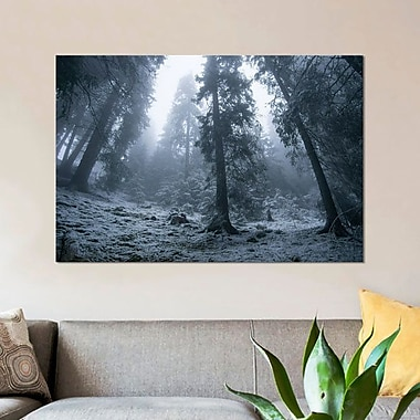 East Urban Home 'The First Snow' Photographic Print on Canvas; 8'' H x 12'' W x 0.75'' D