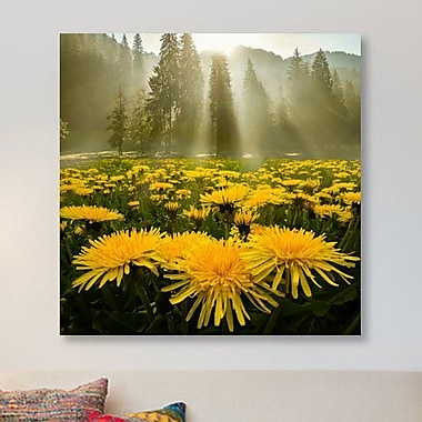East Urban Home 'Morning Glory II' Photographic Print on Canvas; 18'' H x 18'' W x 1.5'' D