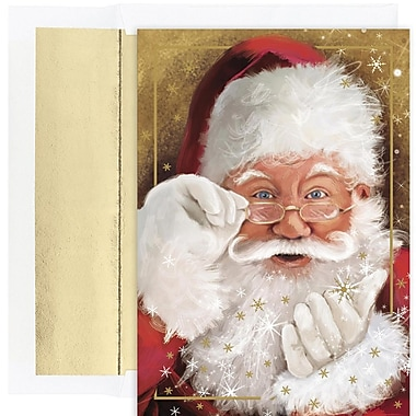 JAM Paper® Christmas Holiday Card Set, Sparkling Santa, 18/Pack (526882800)