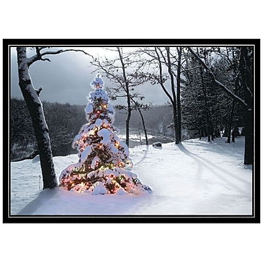 JAM Paper® Christmas Holiday Card Set, Wilderness Tree, 25/Pack (526M1350WB)