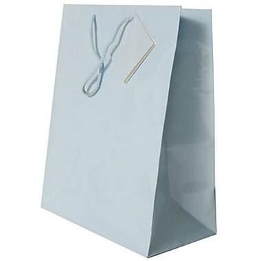 JAM Paper – Sacs-cadeaux brillants, grand format, 10 x 13 x 5 po, 6/paquet