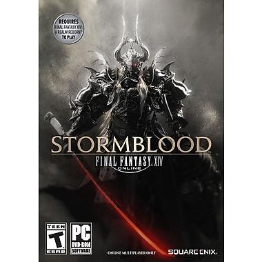 Final Fantasy XIV:Stormblood PC