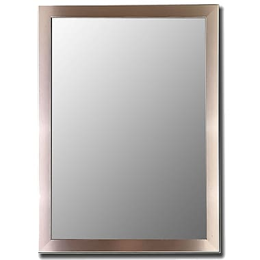 Red Barrel Studio Rectangle Stainless Framed Accent Wall Mirror; 65'' H x 29'' W x 0.75'' D