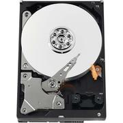 "WD-IMSourcing IMS SPARE AV-GP WD3200AVVS 320 GB 3.5"" Internal Hard Drive"