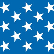The Holiday Aisle Patriotic Stars Blue/White Wall Decor