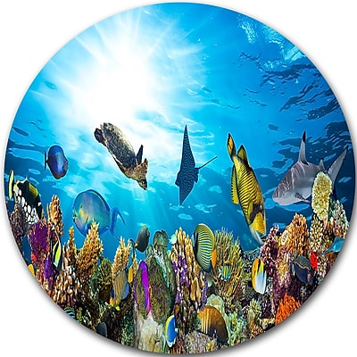 DesignArt 'Colorful Coral Reef w/ Fishes' Photographic Print on Metal; 11'' H x 11'' W x 1'' D