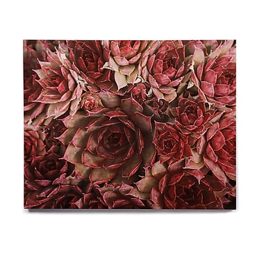 East Urban Home 'Red Succulents' Graphic Art Print on Wood; 11'' H x 14'' W x 1'' D