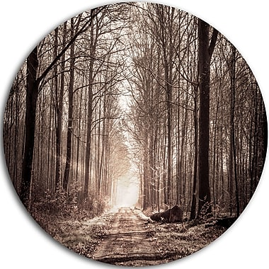 DesignArt 'Forest Trail in Sepia' Photographic Print on Metal; 11'' H x 11'' W x 1'' D