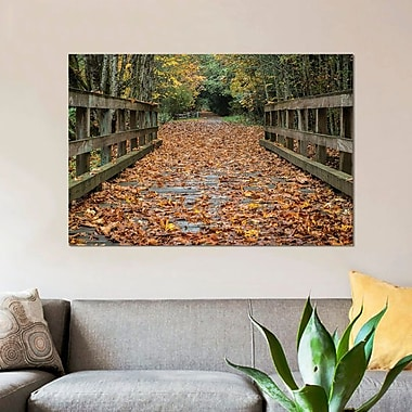 East Urban Home 'Fall on the Goose (Victoria)' By Tim Oldford Photographic Print on Canvas